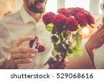 handsome elegant guy is... | Shutterstock . vector #529068616