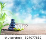 therapy relaxing spa treatment... | Shutterstock . vector #529077892