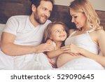 beautiful pregnant woman  her...   Shutterstock . vector #529090645