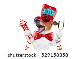 Small photo of jack russell dog celebrating 2017 new years eve with champagne glass and singing out loud, with a fireworks rocket , isolated on white background