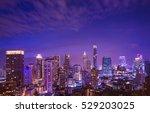 urban night cityscape on... | Shutterstock . vector #529203025