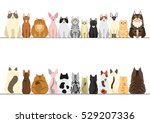 cats border set  front view and ... | Shutterstock .eps vector #529207336