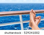 relaxation on cruise ship... | Shutterstock . vector #529241002