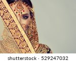 portrait of beautiful indian... | Shutterstock . vector #529247032