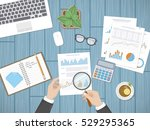 auditing concepts. businessman... | Shutterstock .eps vector #529295365
