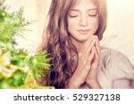 closeup portrait of a beautiful ... | Shutterstock . vector #529327138