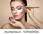 makeup artist applies eye... | Shutterstock . vector #529360456