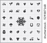 snowflake icon.  agriculture ... | Shutterstock . vector #529387168