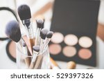 Professional Makeup Brushes An...