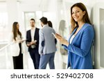 young business woman using a... | Shutterstock . vector #529402708