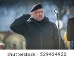 november 18  2016. kyiv region  ... | Shutterstock . vector #529434922