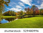 red and orange autumn foliage... | Shutterstock . vector #529480996