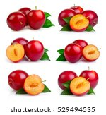 set of red plum fruits with...   Shutterstock . vector #529494535