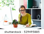 beautiful young woman working... | Shutterstock . vector #529495885