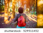 tourist travel  with backpack... | Shutterstock . vector #529511452