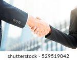 Small photo of Businesswoman making handshake with a businessman -greeting, dealing, merger and acquisition concepts