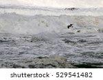 winter storm in the... | Shutterstock . vector #529541482