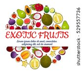 exotic fruits poster of vector... | Shutterstock .eps vector #529557736