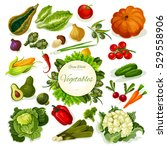 vegetables farm food with... | Shutterstock .eps vector #529558906