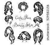 vector set of stylized logo... | Shutterstock .eps vector #529582156