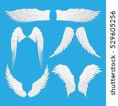 angel wings vector illustration.... | Shutterstock .eps vector #529605256