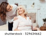 cheerful woman taking care of... | Shutterstock . vector #529634662