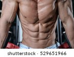 strong athletic man fitness... | Shutterstock . vector #529651966