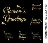 season's greetings typography... | Shutterstock .eps vector #529665742