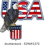 american eagle with usa flag | Shutterstock .eps vector #529691272