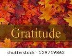 being grateful message  some... | Shutterstock . vector #529719862