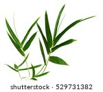 green bamboo leaves isolated on ... | Shutterstock . vector #529731382