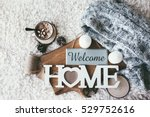 winter homely scene ... | Shutterstock . vector #529752616
