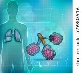 alveoli a part of the... | Shutterstock .eps vector #529803916