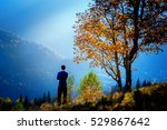 man staying near tree with... | Shutterstock . vector #529867642
