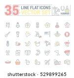 vector graphics set.... | Shutterstock .eps vector #529899265