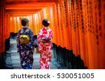 kyoto  japan   2016  november... | Shutterstock . vector #530051005