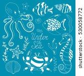 vector colorful wild sea life... | Shutterstock .eps vector #530058772