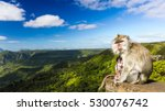 monkeys at the gorges viewpoint.... | Shutterstock . vector #530076742
