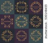 vector gold decorative frame... | Shutterstock .eps vector #530148655