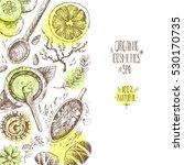 hand drawn background  organic... | Shutterstock . vector #530170735