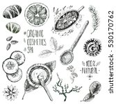 hand drawn vector set  organic... | Shutterstock .eps vector #530170762