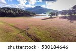 Small photo of November, pink grass at Suoi Vang lake, Da Lat, Vietnam. ( view from drone )