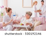 elderly lady sitting on a couch ... | Shutterstock . vector #530192146