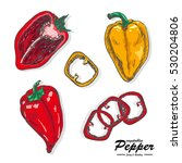 colorful peppers in a sketch... | Shutterstock .eps vector #530204806