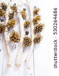 Golden Pine And Cypress Cones...