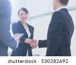 two professional business... | Shutterstock . vector #530282692