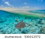 Blue Sky And Coral Reef Taken...