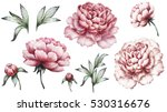 set vintage watercolor elements ... | Shutterstock . vector #530316676