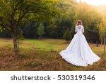 wedding dress  | Shutterstock . vector #530319346