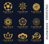 gold flower logo vector set art ... | Shutterstock .eps vector #530351962